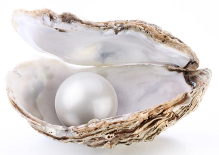 Pearl Founded Worth 100 Million Dollars