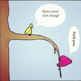 Dont ask me about my diet...