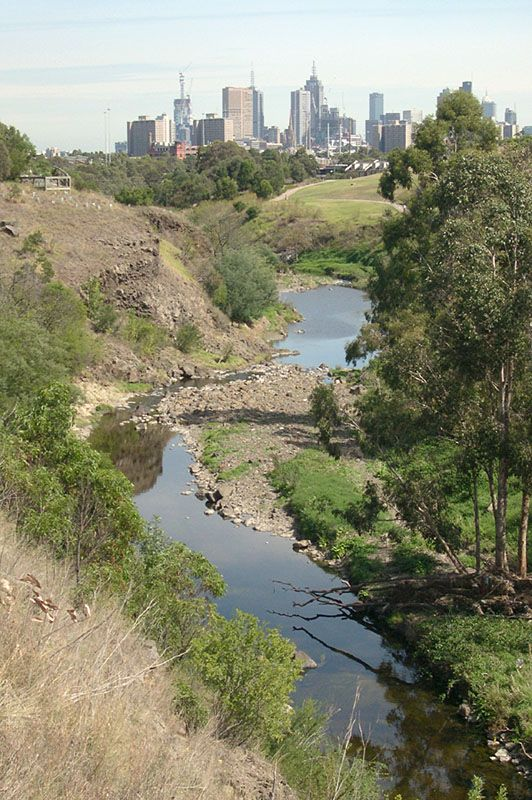The Merri Creek passing through Fairfield and Clifton Hill with Melbourne city skyline in the distance.