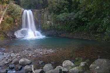 bush waterfall - Google Search