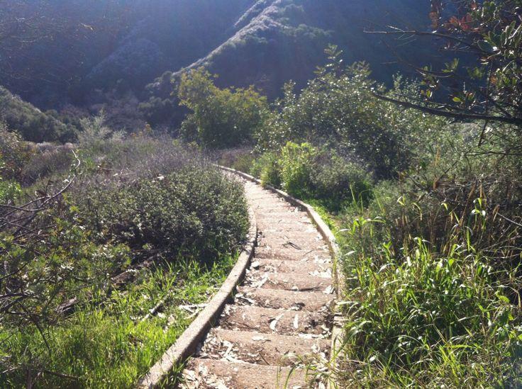 unexpected beauty: Stair Hike, Topanga Canyon, CA