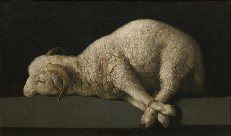 Agnus Dei - Colección - Museo Nacional del Prado ZURBARÁN