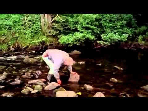 Andy Goldsworthy Documentary Rivers and Tides의 사본 - YouTube