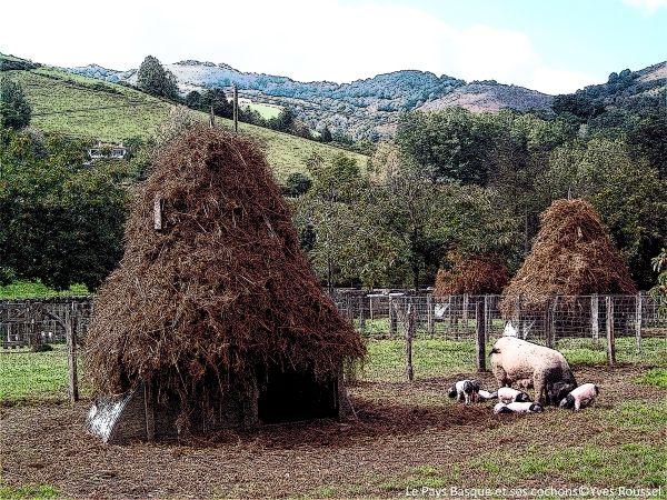 Le Pays Basque et ses cochons © Yves ROUSSEL