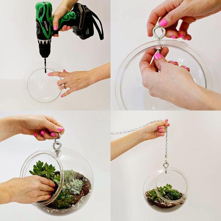 Idea para LAS PLANTAS DE INTERIOR... crasas y cactus