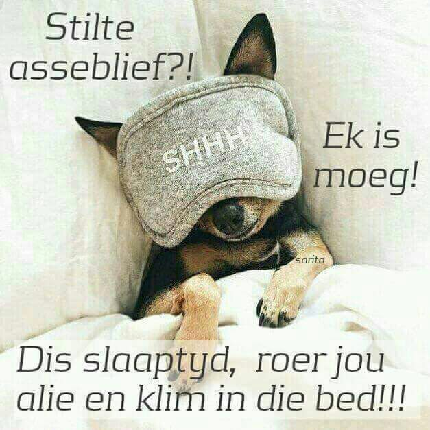 Slaaptyd!