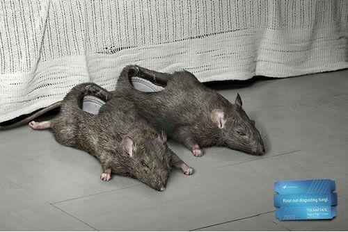Rat slippers.