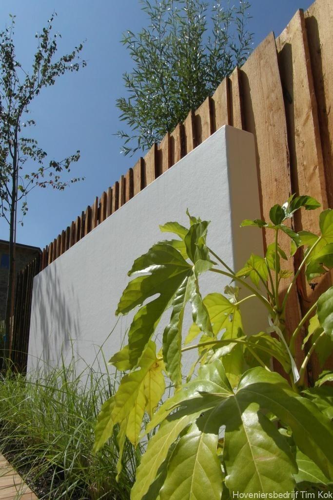 Kleine tuin in Scandinavische sfeer te Rotterdam Overschie - gestuucte-tuinmuur-wit-lage-tuinmuur-avondbeeld-tuin-verlichting-schaaldelen-originele-erfafscheiding-schutting-tuinafscheiding-natuurlijke-tuinafscheiding-landelijk-en -moderne tuin