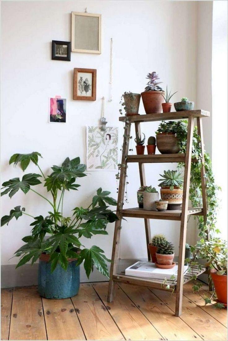 groß  35 Interessante Ideen für Zimmerpflanzen im Sommer
