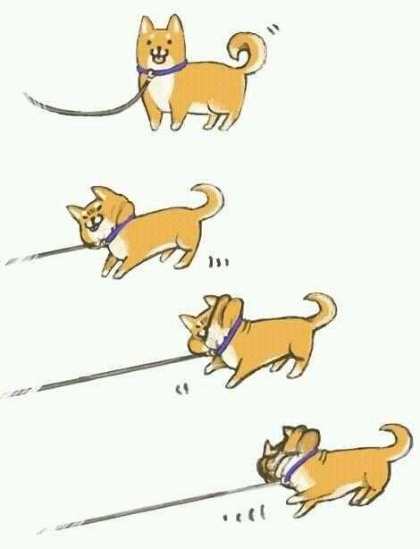 【画像】犬の散歩でありがちなことを描いたイラストがTwitterで話題