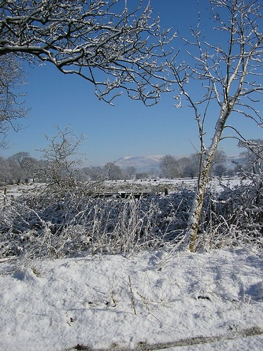 Snow scene Ribble Valley Looking towards Pendle Hill April 2004