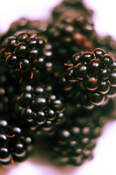 Vruchtenyoghurt en vruchtenkwark | Baby & Dreumes Eetfestijn