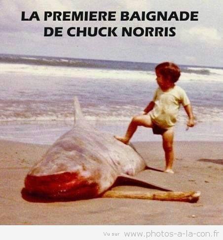 La première baignade de Chuck Norris