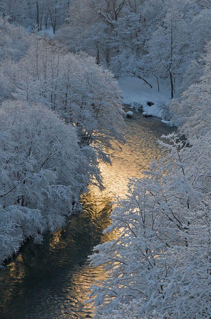 Frosty Stream