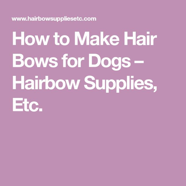 How to Make Hair Bows for Dogs – Hairbow Supplies, Etc.