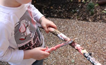 Stick Painting Activity - Australia Day
