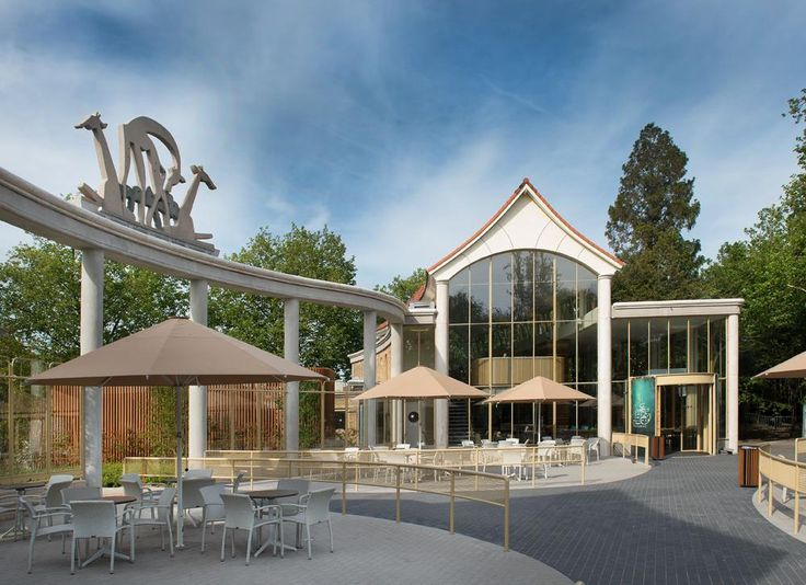 Lunching with Lions at Blijdorp Zoo: A glass façade with slender frames and large spans able to withstand the force of a lion at full speed.