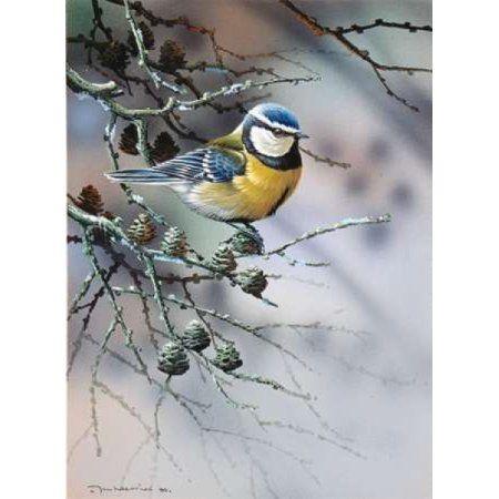 Bird in fir-tree Canvas Art - Jan Weenink (18 x 24)