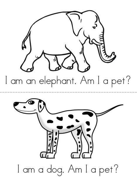 Am I a Pet