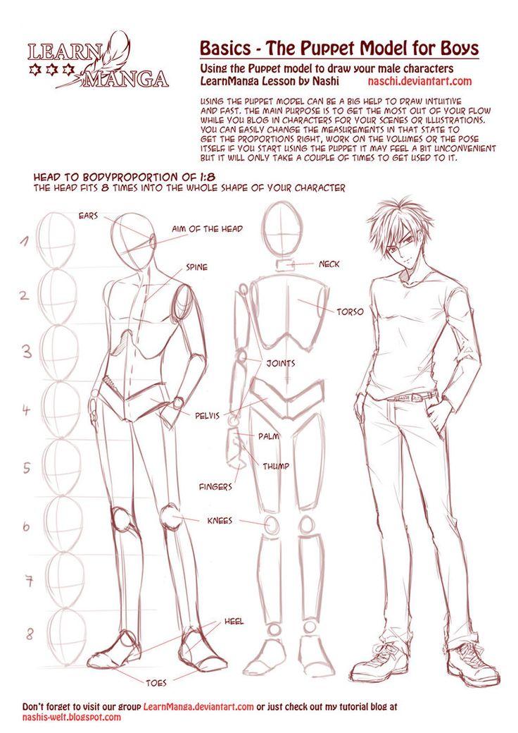 Anatomie des garçons (je crois)