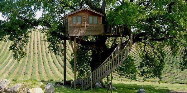 Oltre 25 fantastiche idee su case sull 39 albero per bambini su pinterest - Progetto casa sull albero per bambini ...