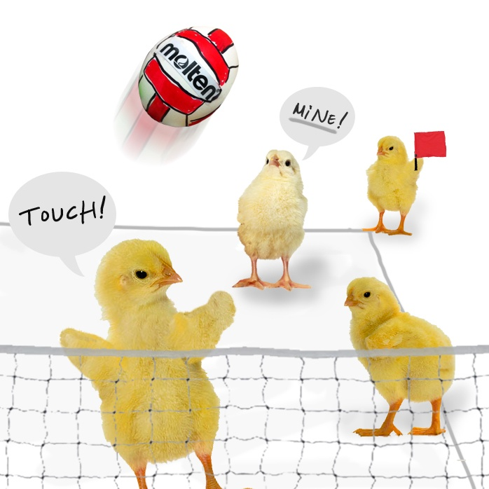 Chick it out! #volleyball