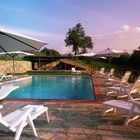 For rent:    1 - 8 th July 2016 7 nights        Amenities      Swimming Pool        Internet        Internet Wifi        Restaurant Near        Weddings        Maid Service        Yard        Baby Bed        Bike Riding        Riding Near        Breakfast        Golf Nearby        Parking        13 Sleeps 6 Bedrooms 6 Bathrooms    Villa Federica is an enchanting and characteristic independent house on a hill near Arezzo. The villa is the result of a skillful, architectural…