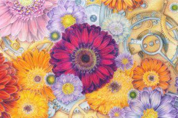 Derwent Blog – Blogs from the world of Derwent Pencils