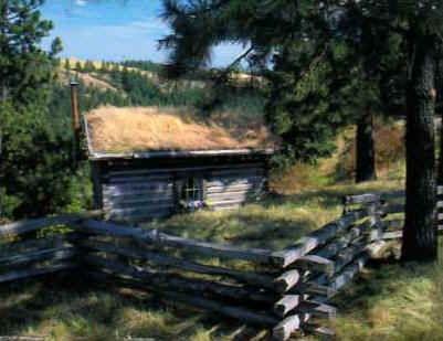 Pioneer Style Cedar Battlefield Fence Hoover Fence Co