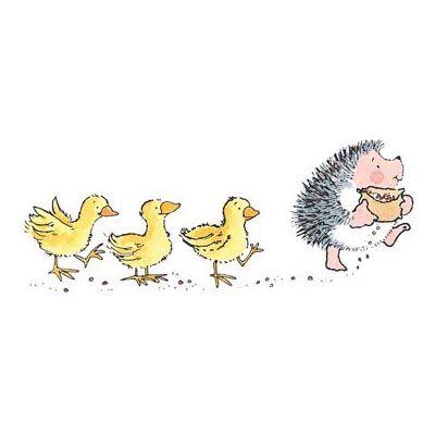 Hérisson et les canards