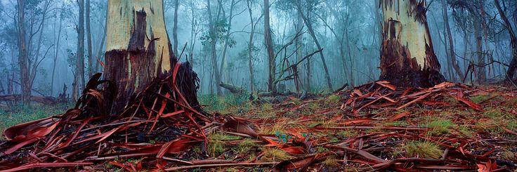Australian Outback Photos, Outback Australia Photos, Country Australia photos, - Landscape photography of Australia by Matt Lauder