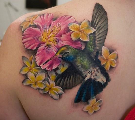 Forasteiro Tattoo Tattoo Serpente: 25+ Melhores Ideias De Tatuagem De Beija Flor No Pinterest