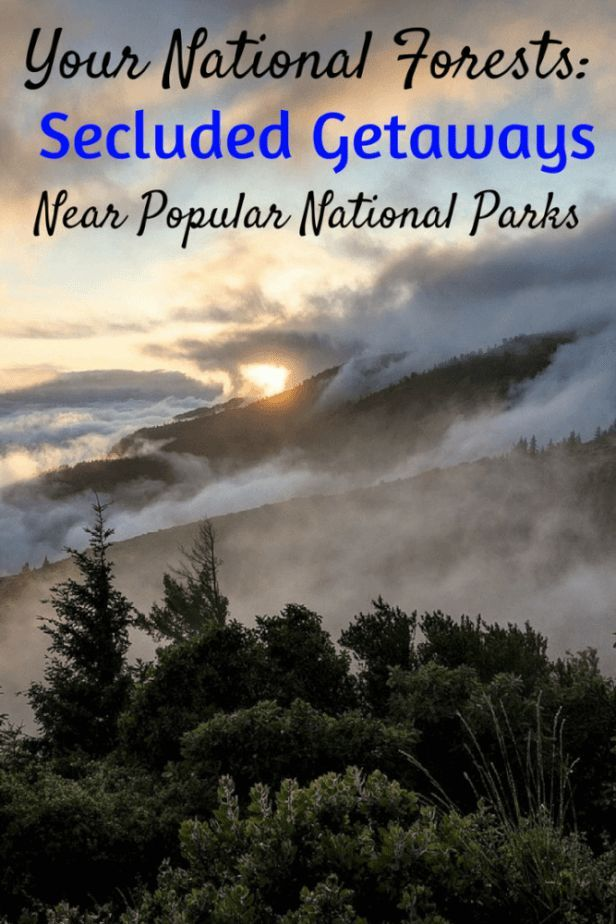 These beautiful national forests are located on the borders of three of the most popular national parks. All the beauty and none of the crowds. #nationalforest #roadtrip