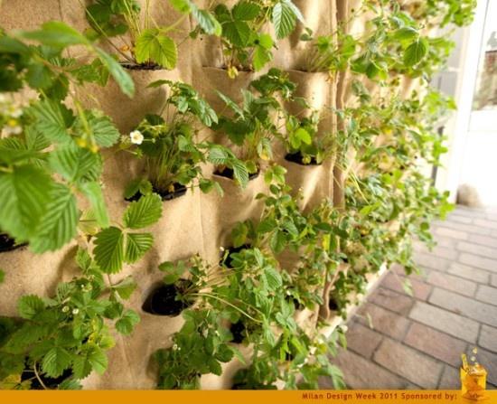 Magnificent Vertical Herb Garden Living Wall Planter Elaboration ...