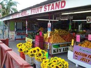 Robert is here, Homestead, Florida - a famous fruit stand just a few miles from the campground
