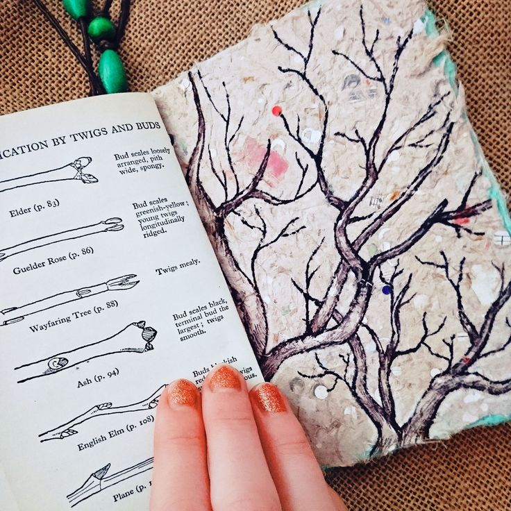 Tree doodles for days ☺️🌿