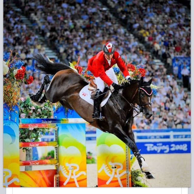 Hickstead Beautiful soul who died during a jumping coarse,Soo said :(