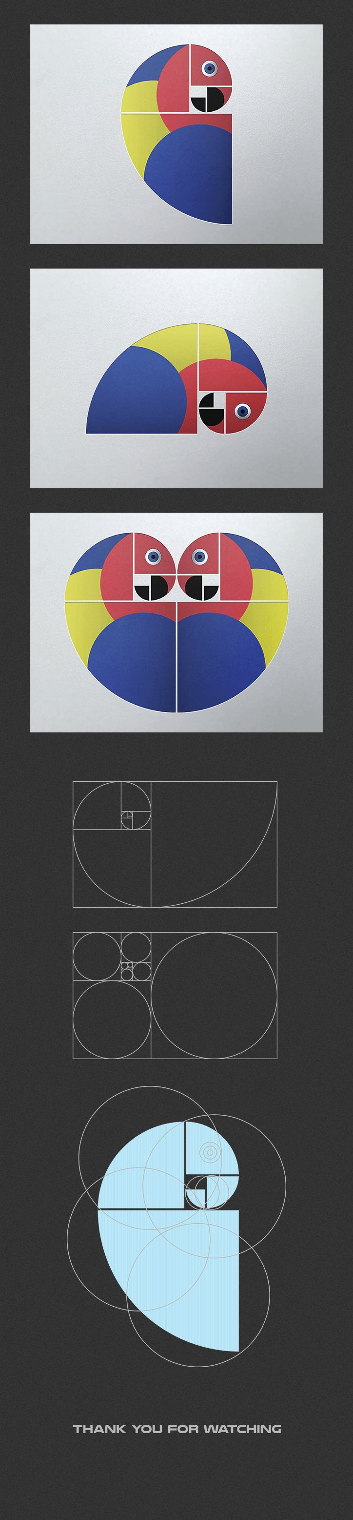 Poster design golden ratio - Parrot Poster Demonstrating The Golden Ratio Designed By Fish Of Life Via