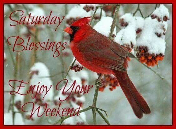 Saturday Blessings!