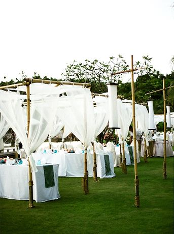 Canopy settings for the reception.