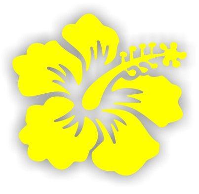 15 mejores imgenes de Hawi en Pinterest  Fiesta hawaiana