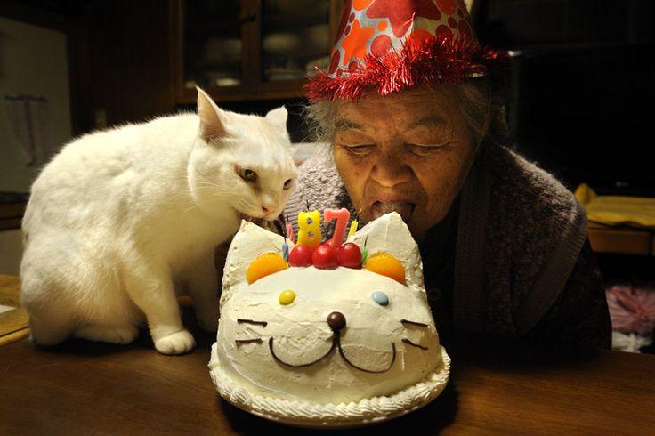 Vivant sous le toit de sa grand-mère, une jeune japonaise – Ihara Miyoko – la photographie dans son quotidien. Elle a ainsi réussi à capter l'émouvante relation qui existait entre la nonagénaire et son félin… jusqu'à leur séparation le 18 mars dernier.