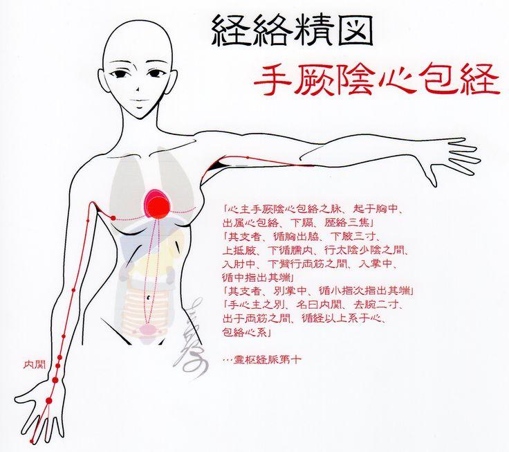 手厥陰心包経-Pericardium meridian,Acupuncture points-