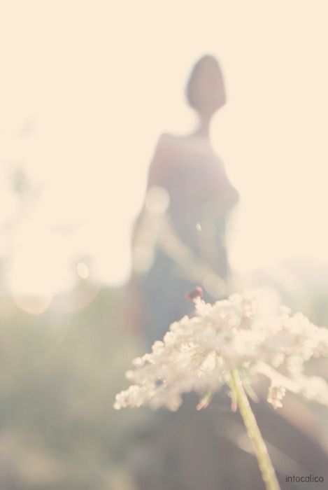 I stood still, vision blurring, and in that moment, I heard my heart break. It was a small, clean sound, like the snapping of a flower's stem. ~~ Diana Gabaldon, Dragonfly in Amber ~~ ♥ X ღɱɧღ
