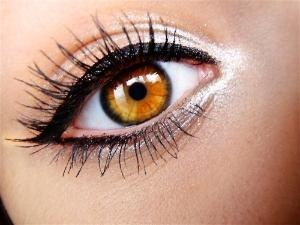 love: Eyecolor, Eye Makeup, Cat Eye, Eye Color, Bright Eye, Blue Eye, Eyemakeup, Eye Liner, Green Eye