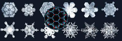 No hay dos cristales de nieve iguales pero la simetría de todos es la misma (de aspecto hexagonal aunque desde un punto de vista estrictamente cristalográfico, trigonal). La razón se encuentra en la estructura cristalina del hielo (mostrada en color en el centro) que tiene exactamente la misma simetría y la transmite a los cristales.