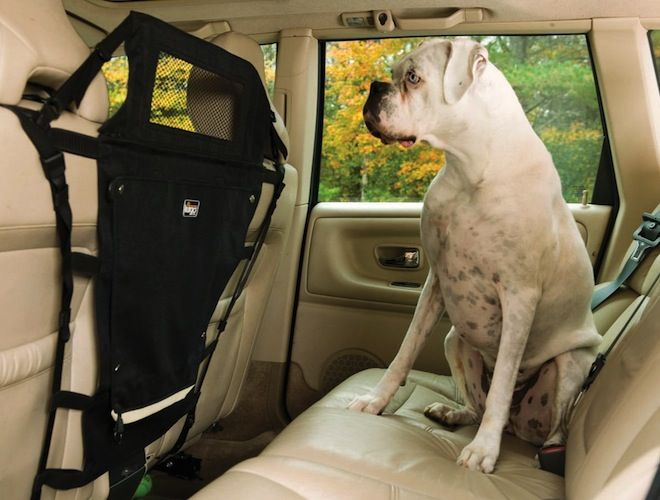 Kurgo Backseat Pet Barrier – $37