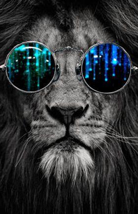 Leão - Psicodélico •|• Lion - Psychedelic