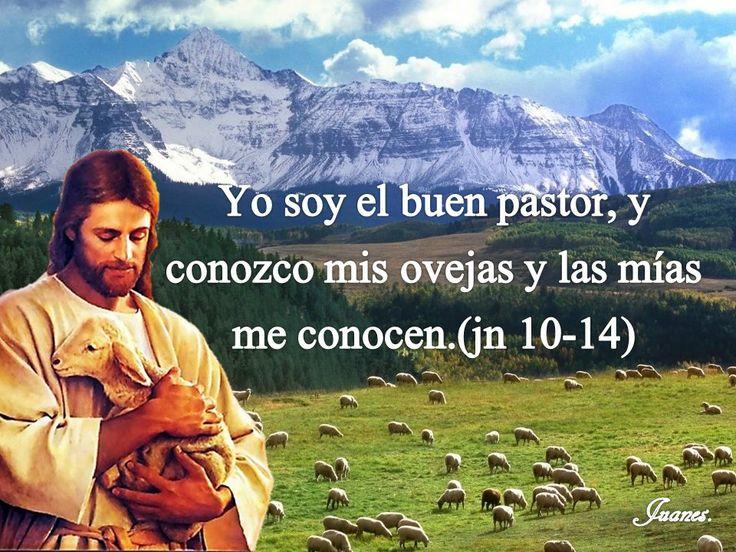 Yo soy el buen pastor, y conozco mis ovejas y las mías me conocen.(jn 10-14)