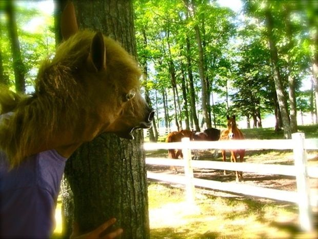 2012: the year of the horsehead mask